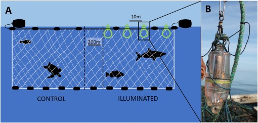 LED lights on gill nets-1